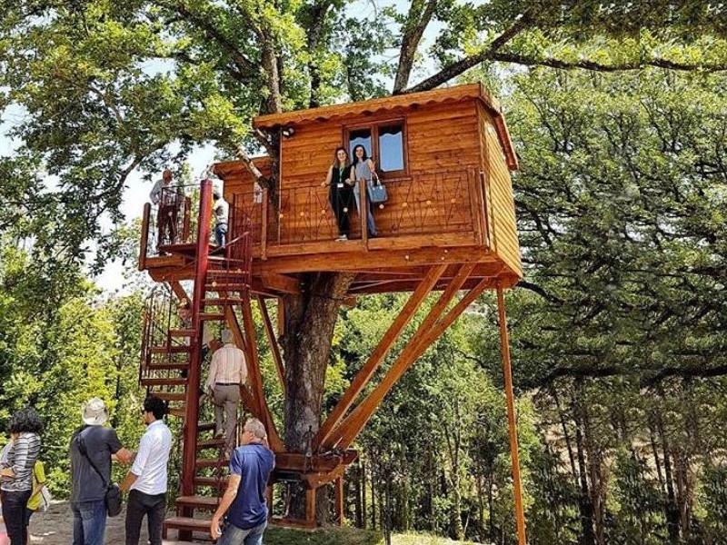 Un soggiorno alla Casa sull\'albero della Tenuta Bocchineri ...